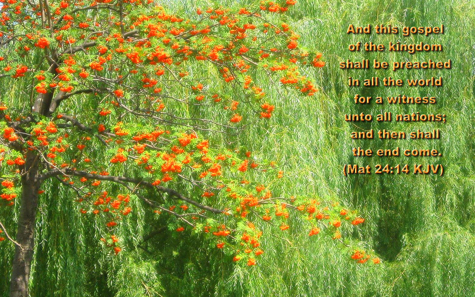 large size bible versed scenic, nature, wallpapers « christian