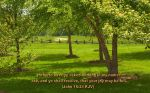 christian wallpaper large (115)